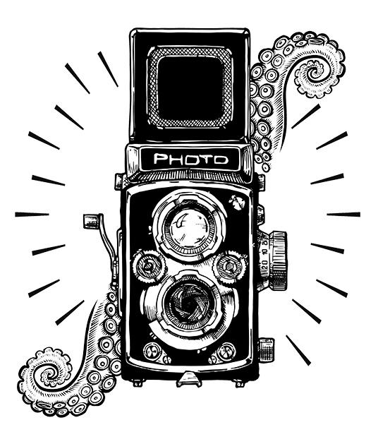 Logotipo de Kraken Fotografía
